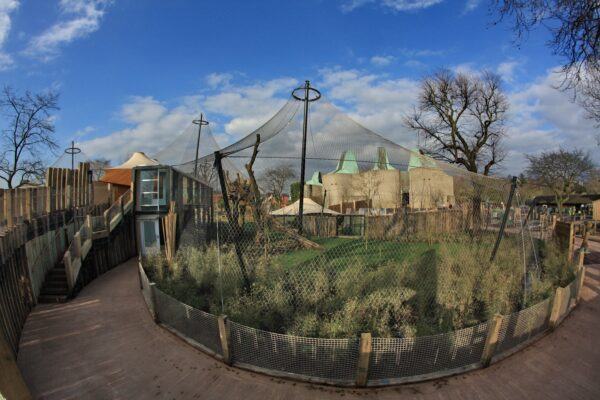 How the Right Mesh Enclosures Can Improve Animal Welfare at the Zoo