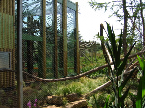 Bristol Zoo Howler Monkey Enclosure